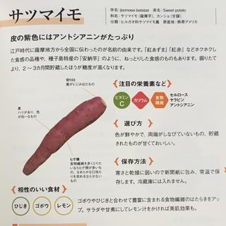 糸島野菜(野菜)