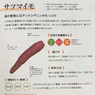 糸島(野菜)