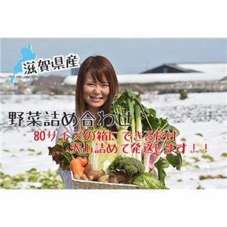 送料込み) 滋賀県産 新鮮野菜セット 無農薬 減農薬 野菜詰め合わせ80サイズ(野菜)