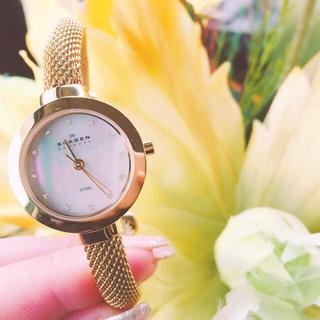 スカーゲン(SKAGEN)のSKAGEN 107SGCG (腕時計)