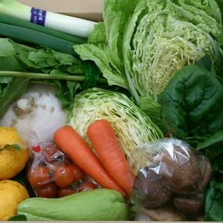 ☆どっさり120サイズ☆岡山産 新鮮野菜 食品/飲料/酒の食品(野菜)の商品写真