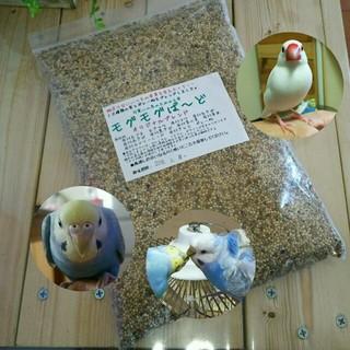 モグモグばーど 生きた種10穀ブレンド  鳥の餌  (鳥)