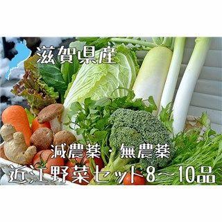 滋賀県産 近江野菜セット 8~10品 新鮮野菜詰め合わせ 無農薬 減農薬(野菜)