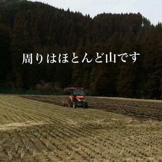 実家のお米ヒノヒカリ 玄米30kg 食品/飲料/酒の食品(米/穀物)の商品写真