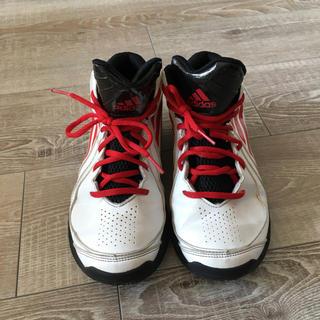 アディダス(adidas)のえり様専用 adidas バスケットシューズ 23㎝(スニーカー)