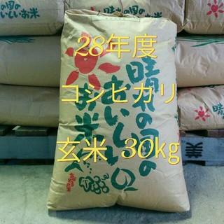 農家直送新米コシヒカリ30㎏ 食品/飲料/酒の食品(米/穀物)の商品写真