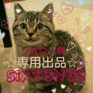ジャニーズ(Johnny's)の【仮】✩はな✩様専用✩5月号各誌定期購入ページ(アイドルグッズ)