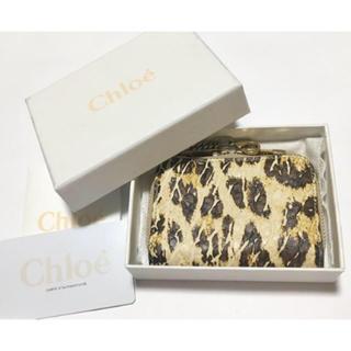 クロエ(Chloe)のchloe/レオパード/ミニ財布/コインケース(コインケース)