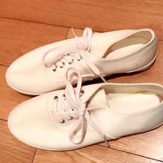 ジーユー(GU)の最終値下げ▼GU 白 新品 スニーカー 23.0(スニーカー)