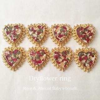 dryflower ring 🌹(リング)
