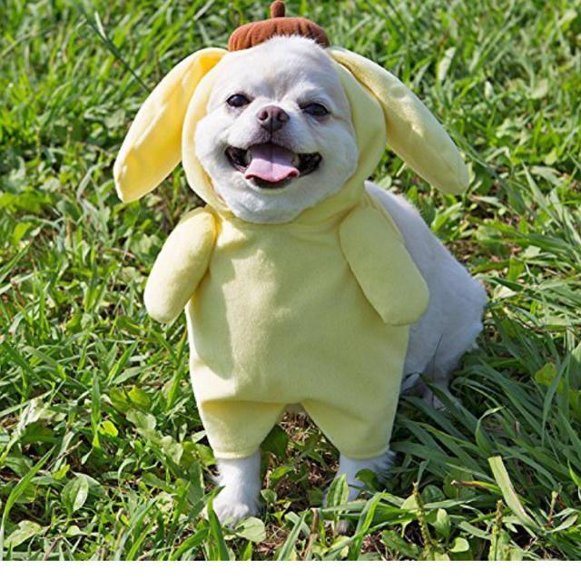 サンリオ(サンリオ)のポムポムプリン 犬用の服 その他のペット用品(