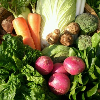 ☆嬉しい100サイズ☆岡山産 新鮮野菜 食品/飲料/酒の食品(野菜)の商品写真