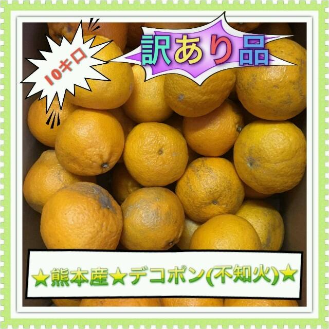 熊本県産☆デコポン訳あり☆10キロ 食品/飲料/酒の食品(フルーツ)の商品写真