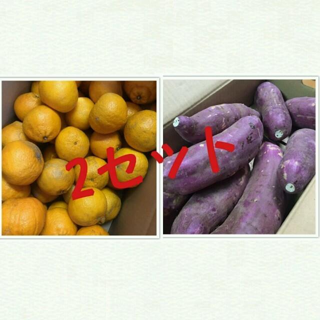 熊本県産☆デコポン訳あり5キロ&紅はるか5キロセット 食品/飲料/酒の食品(フルーツ)の商品写真