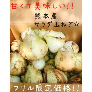 大人気☆美味しい新玉ねぎ\約10kg 家庭用/(野菜)