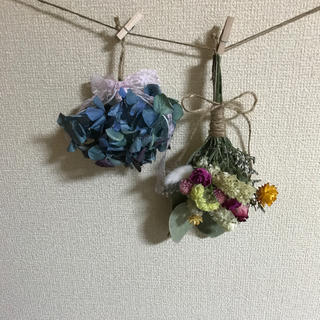 日曜限定☆お値下げ☆(ドライフラワー)