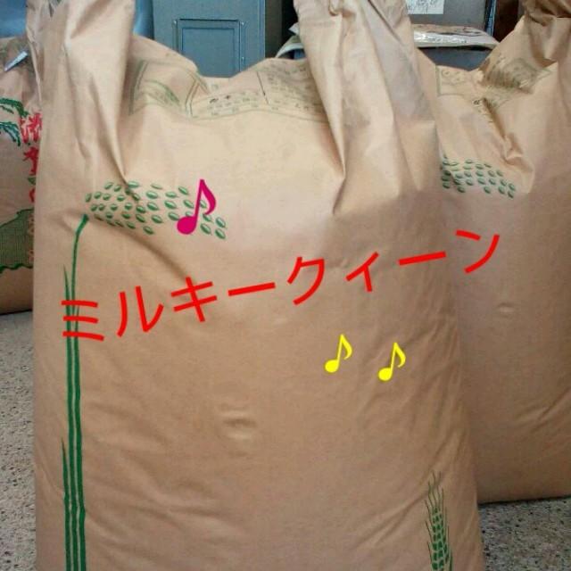 28年滋賀県産ミルキークィーン玄米20㎏  食品/飲料/酒の食品(米/穀物)の商品写真