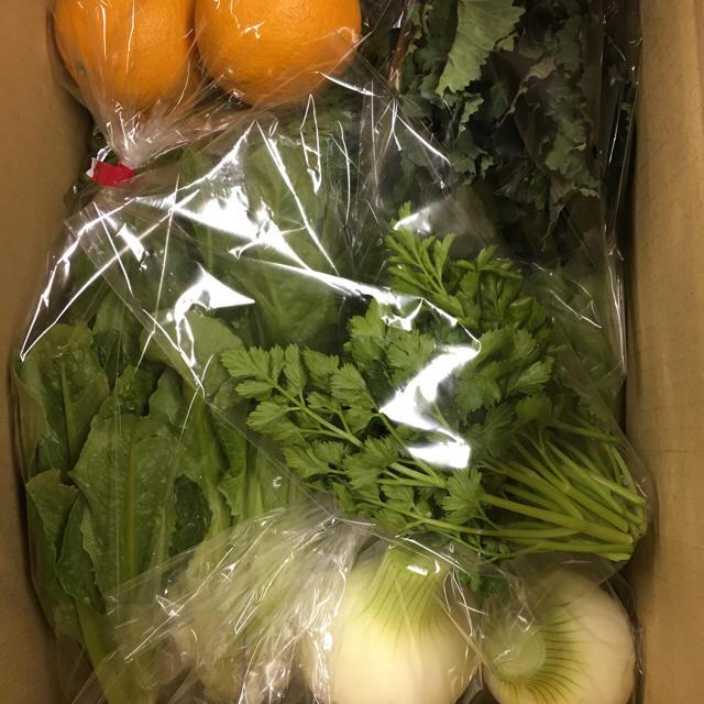 [送料込み]愛知産 新鮮!季節の野菜セット80サイズ 食品/飲料/酒の食品(野菜)の商品写真
