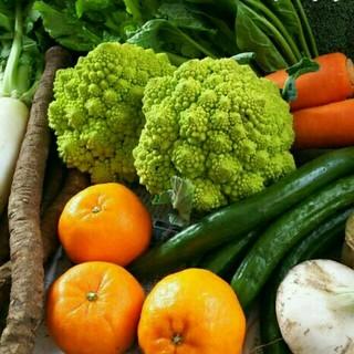 sam-store様専用ページです 春のお野菜➰! 野菜詰め合わせ(野菜)
