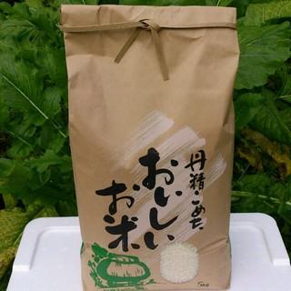 ☆H28年産 きぬむすめ5㎏☆岡山産(米/穀物)