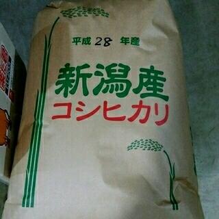 くっきー様専用 農家直送!新潟コシヒカリ玄米30kg(米/穀物)