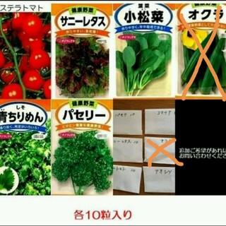 野菜種5種 ベランダ菜園など(野菜)