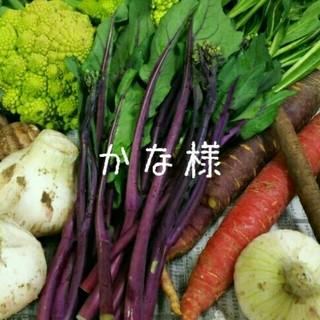 かな様専用ページです 80サイズ箱 春のお野菜➰! 野菜詰め合わせ(野菜)