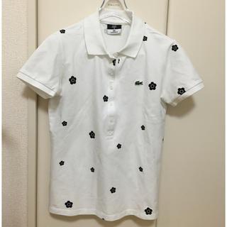 マリークワント(MARY QUANT)のマリークワント☆ラコステコラボポロシャツ(ポロシャツ)
