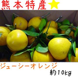 熊本産·✩̋·ジューシーオレンジ☆河内晩柑約10kg(家庭用)No2(フルーツ)