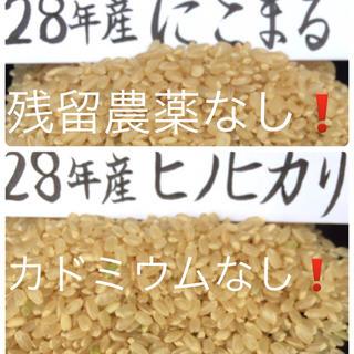 (食べ比べ3合x2)28年産にこまる&ヒノヒカリ(米/穀物)