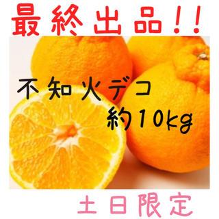 【限定販売】熊本産☆不知火デコ約10kg(フルーツ)