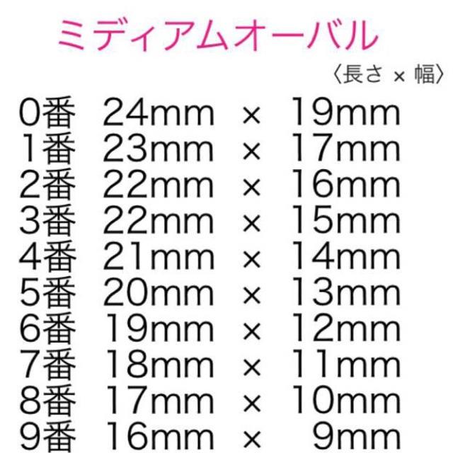グレーストライプ♡ネイルチップ ハンドメイドのアクセサリー(ネイルチップ)の商品写真