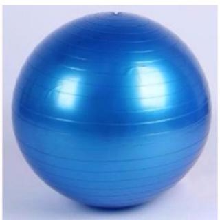 バランスボール 直径55cm 空気入れ付き ヨガボール (ブルー) 2681(エクササイズ用品)