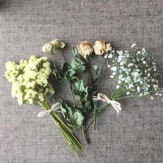 黄色系花材セット・ドライフラワー・スワッグ✳︎送料無料 商品66(ドライフラワー)