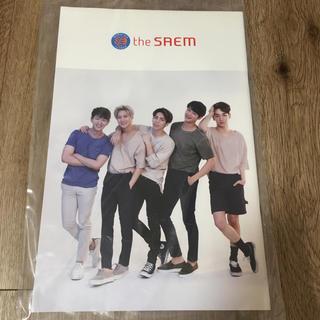 ザセム(the saem)の【なつ様専用】SHINee パンフレット+ポスター(アイドルグッズ)