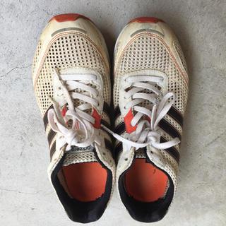 アディダス(adidas)のadidas ランニングシューズ お値下げ可能(ランニング/ジョギング)