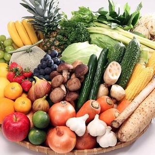 【★暑い時は水々しい野菜★】[Sサイズ]無農薬旬のおまかせ野菜セット/三重県(野菜)