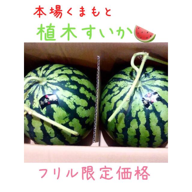 植木すいか2玉/お試し価格(1) 食品/飲料/酒の食品(野菜)の商品写真