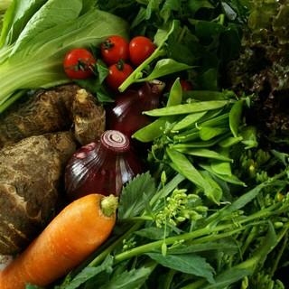 保冷発泡スチロール便 色々お野菜  野菜詰め合わせ  100サイズ箱(野菜)