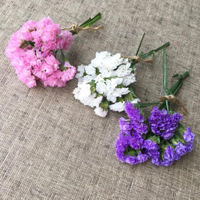 スターチス三色ミニセット・スワッグ☆送料無料 商品75 ハンドメイドのフラワー/ガーデン(ドライフラワー)の商品写真