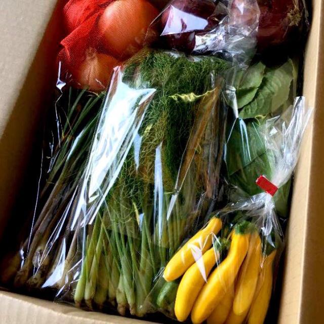 裕唯様専用クール便野菜セット 食品/飲料/酒の食品(野菜)の商品写真