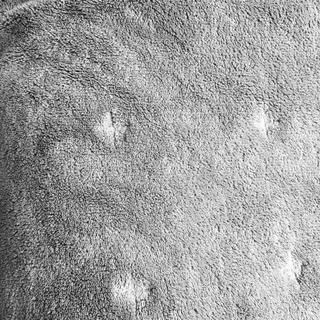 ムジルシリョウヒン(MUJI (無印良品))の無印良品♢洗えるふんわりラグ(ラグ)