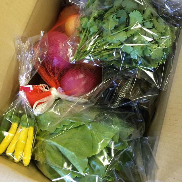 裕唯様専用 野菜セット愛知産 食品/飲料/酒の食品(野菜)の商品写真