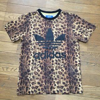 アディダス(adidas)のアディダス adidas オリジナルス レオパード 豹柄Tシャツ 美品(Tシャツ/カットソー(半袖/袖なし))