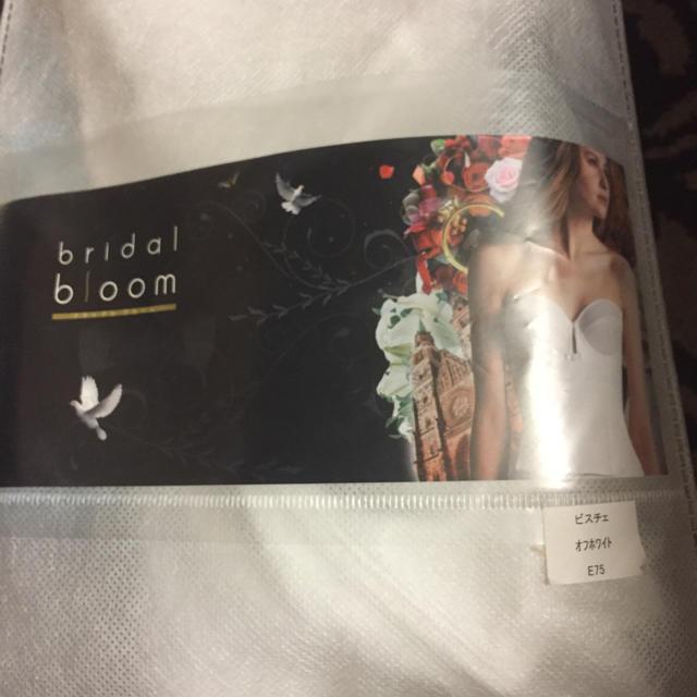 BLOOM(ブルーム)のブダイダルビスチェE75 レディースの下着/アンダーウェア(ブライダルインナー)の商品写真