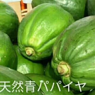 【売切御免】国産 青パパイヤ5kg(5個以上)/東北~四国まで送料無料!(野菜)