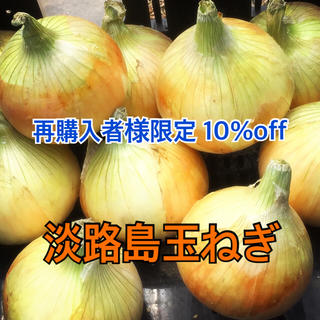 【再購入者様限定】 5%off 淡路島 玉ねぎ 送料無料(野菜)