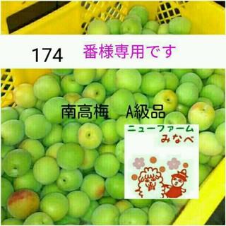 シブリン様専用☆南高梅の青梅10キロ(漬物)