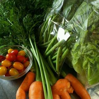 クール便 色々お野菜 モリモリ80サイズ多種類 野菜詰め合わせ(野菜)