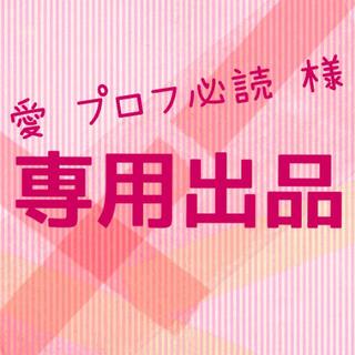 バンダイ(BANDAI)の愛♡プロフ必読 様  専用出品(その他)